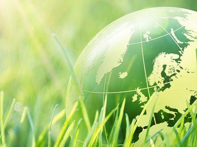 Weltkugel im Gras grün Nachhaltigkeit Umwelt